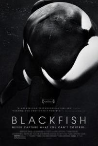 BLACKFISH_Film_Poster